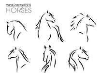 Set of hand drawn vector horses silhouettes. Set of hand drawn vector horses heads silhouettes Stock Photography