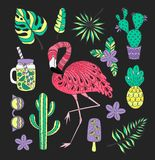 Set of hand drawn vector tropical elements with flamingo, exotic leaves. Royalty Free Stock Photos