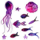 Set of hand drawn vector watercolor underwater fishes and octopus. Artistic design elements. stock illustration
