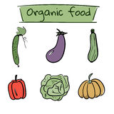 Set of hand drawn vegetables icons. Vector illustration. Set of hand drawn color vegetables icons. Vector illustration Royalty Free Stock Photography