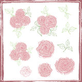 Set of hand drawn vintage tender roses Royalty Free Stock Photography