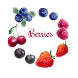 Set of hand drawn watercolor berries. Royalty Free Stock Image