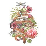 Set of hand drawn watercolor botanical illustration of swamp theme with a snake. Element for design of invitations Stock Photo