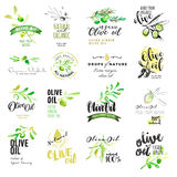 Set of hand drawn watercolor labels and elements of olive oil stock illustration