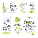 Set of hand drawn watercolor labels and signs of olive oil Royalty Free Stock Photos