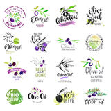 Set of hand drawn watercolor labels and stickers  of olive oil Royalty Free Stock Photography