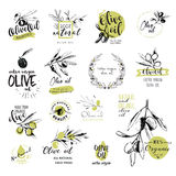 Set of hand drawn watercolor stickers and badges of olive oil Stock Photos