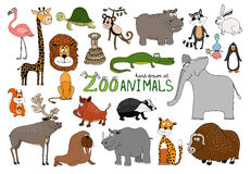 Set of hand-drawn zoo animals. On white with a flamingo  lion  rhino  elephant  raccoon  bison  squirrel  reindeer  walrus  beaver  warthog  crocodile  hippo Royalty Free Stock Image