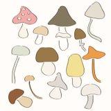 Set Hand gezeichnete Pilze. Lizenzfreie Stockfotos