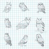 Set of hand-painted owls on a notebook sheet Stock Photos