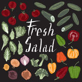 Set of hand painted text and vegetables for salad. Great for agriculture, restaurant, cafe, grocery, food ads, texture design Royalty Free Stock Photography