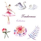Set of hand painted watercolor ballerina, swans, peonies, twig stock illustration