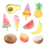 Set of hand painted watercolor summer fruits Royalty Free Stock Photo