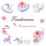 Set of hand painted watercolor swans, peonies, twig, ribbon, feathers stock illustration