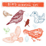 Set of handdrawn birds Royalty Free Stock Photography