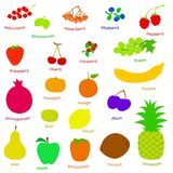 Set handdrow fruits and berries Royalty Free Stock Images