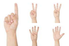 Set of hands symbol showing finger count up to five royalty free stock images