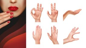 Set of hands Royalty Free Stock Photos
