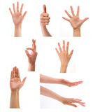Set of hands in white background. Set of different hands in varied gestures Royalty Free Stock Photos
