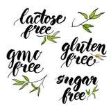 Set of handwritten brush calligraphy eco food words. Vector illu Stock Images