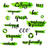 Set of handwritten brushpen lettering and calligraphy ecology word. Template for eco logo, label and badge. Stock Photo
