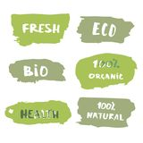 Set of handwritten organic, bio, eco lettering.  Vector illustration. Set of handwritten organic doddle lettering. Fresh, Eco, Bio, 100% Organic, Health, 100% Royalty Free Stock Photos