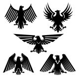 Set of hawk and eagle heraldic, falcon icons. Heraldic eagle or bird of prey set of icons. Silhouette of american falcon or USA hawk, majestic predator or hunter Royalty Free Stock Photography