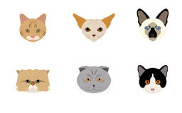 Set of Head Cats Vectors and Icons Stock Images
