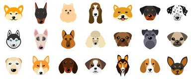 Set Heads of Dogs, Collection Different Breeds of Canines, Isolated on White Background Royalty Free Stock Photography
