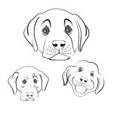 Set of heads of dogs with different emotions Royalty Free Stock Photography