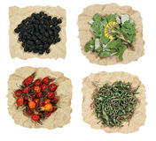 Set of healing herbs. Dried grass for use in alternative medicin Stock Photos