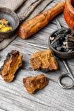 Set of healing herbs Stock Images