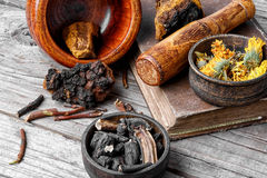 Set of healing herbs Royalty Free Stock Images