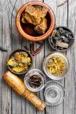 Set of healing herbs Stock Image