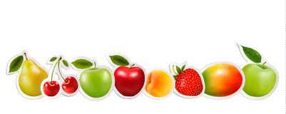 Set of healthy food fruit. Vector Stock Photos