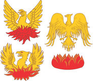 Set of heraldic phoenix birds. Vector illustrations Stock Images