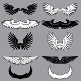 Set of heraldry wings. In black and white Stock Photos