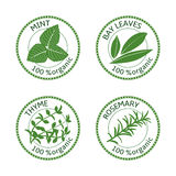 Set of herbs labels. 100 organic. Vector illustration Royalty Free Stock Images