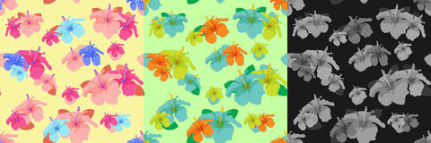 Set hibiscus flowers yellow, green, black seamless vector illust Royalty Free Stock Photography