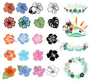 Set of hibiscuses and designs on summer theme Stock Photography