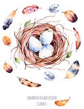 Set of high quality hand painted watercolor bird nest with eggs and feathers. For you unique creation.Can be used for you projects,template and greeting cards stock illustration