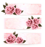 Set of holiday banners with pink beautiful roses. Royalty Free Stock Photos