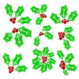 Set of Holly Berry Icons Royalty Free Stock Photo