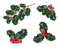 Set of holly christmas decorations royalty free stock photo