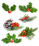 Set of Holly leaves and berries stock image