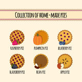 Set of home made pies stock illustration