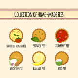Set of home made pies Royalty Free Stock Image