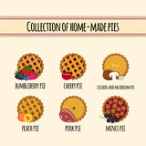 Set of home made pies Royalty Free Stock Photo