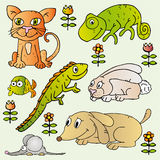 Set of home pets illustrations Royalty Free Stock Photo