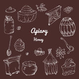 Set of honey elements. Apiary icons for your design. Vector sketches, Royalty Free Stock Image